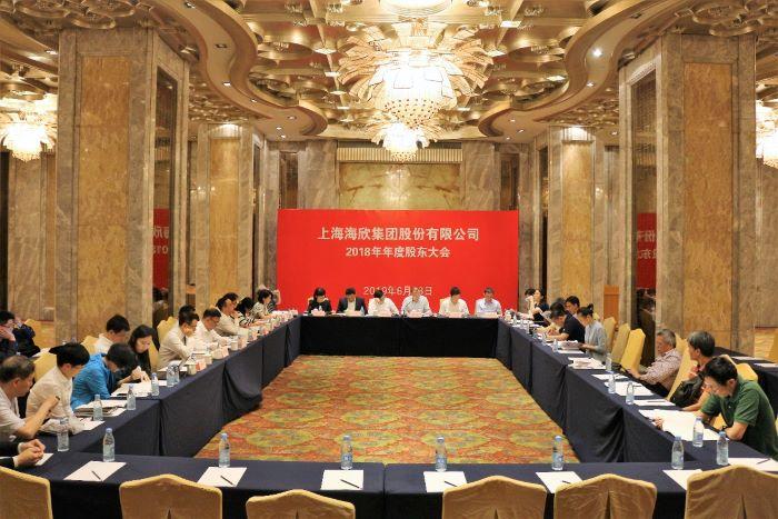 公司召开2018年年度股东大会